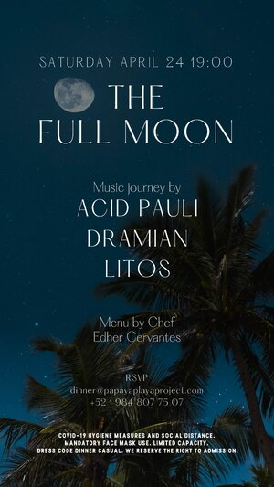 The Full Moon - Music Journey by Acid Pauli